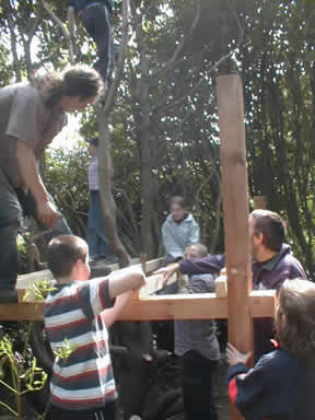 Building the treehouse
